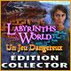Jeu a telecharger gratuit Labyrinths of the World: Un Jeu Dangereux Édition