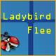 Acheter Ladybird Flee