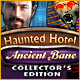 Haunted Hotel: Ancient Bane Collector's Edition