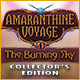 Spelletjes downloaden voor pc : Amaranthine Voyage: The Burning Sky Collector's Edition