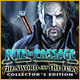 Spelletjes downloaden voor pc : Rite of Passage: The Sword and the Fury Collector's Edition
