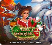 Alice's Wonderland 4: Festive Craze Collector's Edition for Mac Game