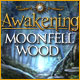 Awakening: Moonfell Wood Screenshot