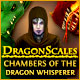 DragonScales: Chambers of the Dragon Whisperer
