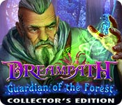 Dreampath: Guardian of the Forest Collector's Edition for Mac Game