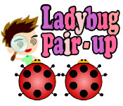 Ladybug Pair-Up