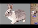 Pixel Art 13 for Mac OS X