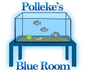 Polleke's Blue Room