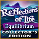 Reflections of Life: Equilibrium Collector's Edition