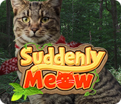 Suddenly Meow