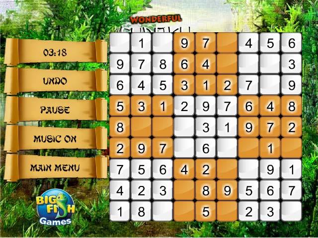 Image Wonderful Sudoku